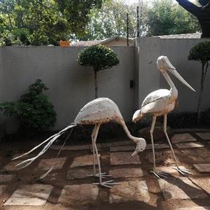 Large Garden Birds