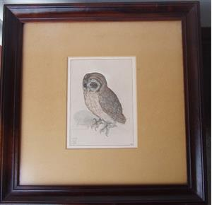 Sreech - OWL - 1508 - Framed - in Excellent condition