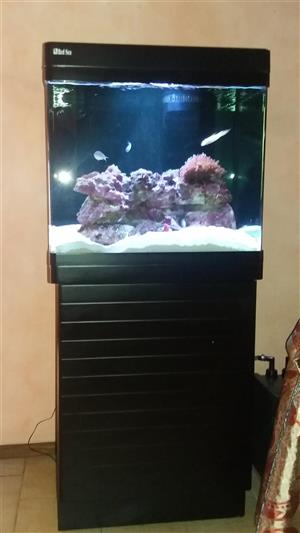 Aquarium Red Sea 130D
