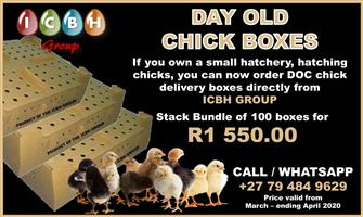 SUPPLIER OF DAY OLD CHICK BOXES