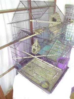 Fincher's plus cage