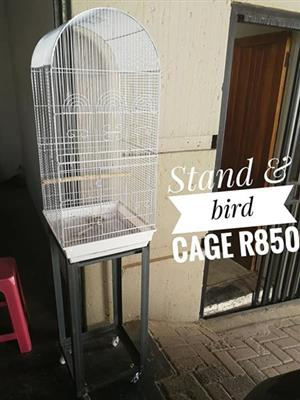 Stand and bird cage for sale