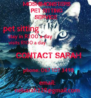 Moshimonsters pet sitting service