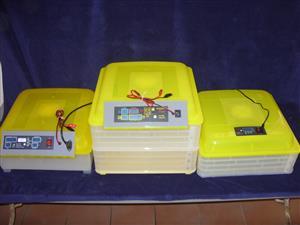 Automatic Digital Incubators. Manual too