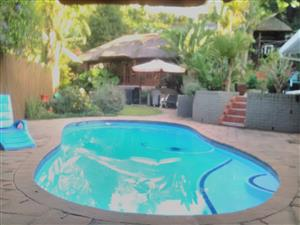 Bed n Breakfast at Tranquil Thrush Nest...Book your overnight stays with Thrush Nest B n B 0648205306 Pinetown, Durban