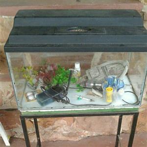 Fish Tanks And Aquariums In Kwazulu Natal Junk Mail