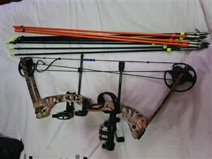 Bow Fishing Bow