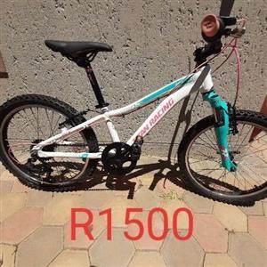 Titan Racing mountain bike, used for sale  Mossel Bay