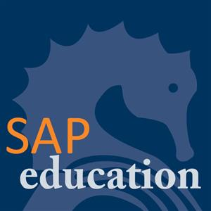 SAP COUNSULTING, TUITION ,TRAINING AND SUPPORT SERVICES , ALL MODULES AT AFFORDABLE PRICES!!!