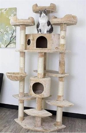 Luxury Large Cat Tower with Two Condos