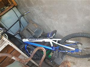 Boys Bicycle R250