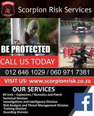 Scorpion Risk Services