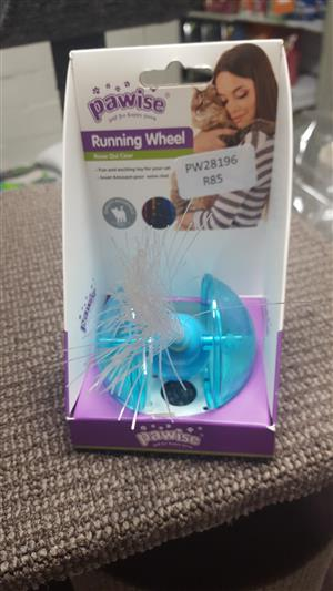 Cat running Wheel Toy now available at PETS4LIFE BRACKENFELL