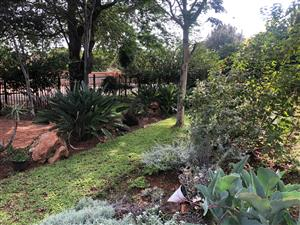 2 Bedroom flat to rent in Brummeria(Pretoria East)