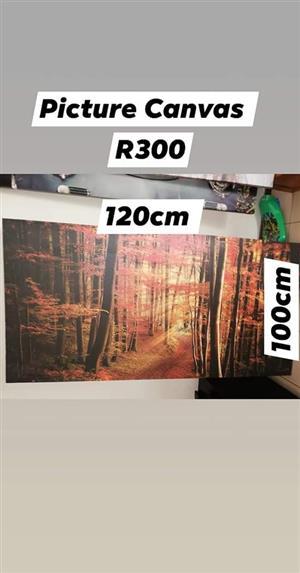 Orange trees picture canvas