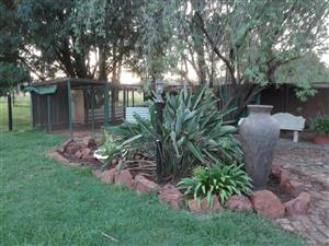 2.0 Hectares farm available for sale.Walker Ville