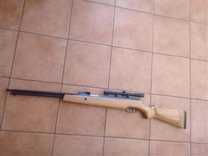 Palletgun with scope