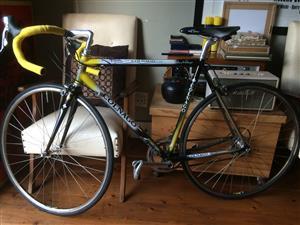 Colnago Art Decor Road Bike