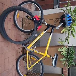 Schwinn bicycle. All accesories included!