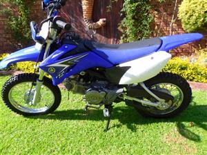 2010 Yamaha TTR