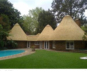 Thatch lapas and harvey thatching