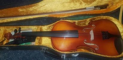Mint condition 1975 violen for sale