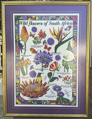Beautiful Framed Tea-Towels printed on fabric only set in South Africa