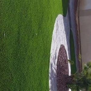 Landscaping Specialists