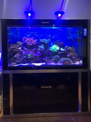 Aquaria Marine Tank