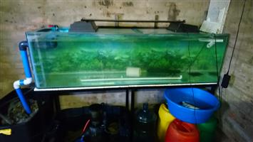 6ft tank and stand only drilled with 50mm hole