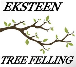 EKSTEEN TREE FELLING