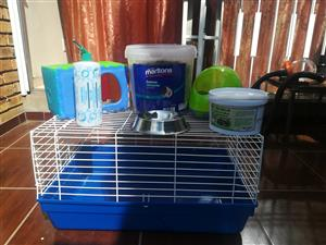 Guinea Pig accessories for sale