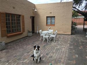 Garden cottage to let in edenvale