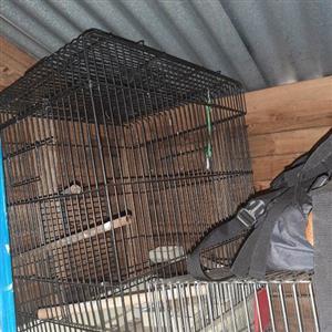 Bird - Parrot Cage