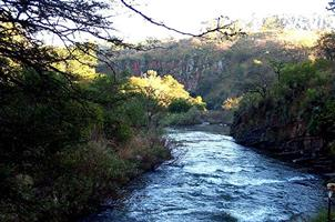 Excellent fly-fishing – Lydenburg!