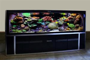 3 meter Aquaria AABZ3000 Aquarium..