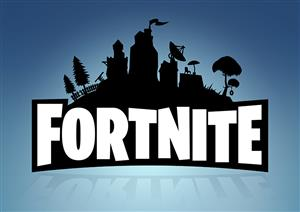 a perfect gift for a Fortnite fan!