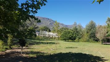 New subdivision – prime residential or business plots for sale in Greyton!