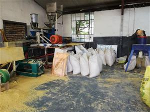 Extrusion plant for sale