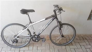 Silverback Oakland Bicycle - Shimano System with Front Shocks