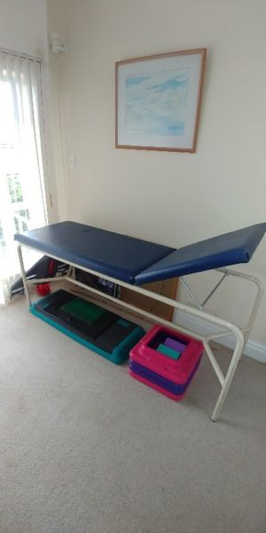 Massage Table for Professional Use