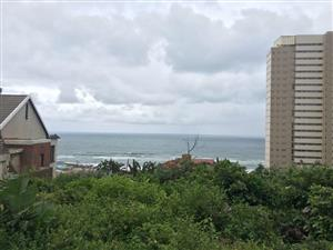 Liquidation Auction, Amanzimtoti