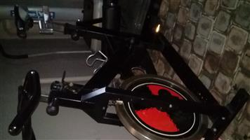 Raleigh Spin Bike