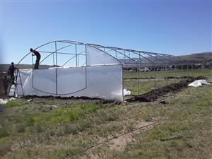 Tunnels for sale structures with 200 micron clear plastics and repairs of old structures quality vegetables and back yards nursery contact us today