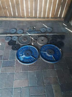 Gym weights