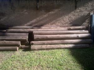 LOGS - TREATED TIMBER