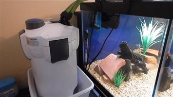 Looking for an external filter carnister with over 1000l/h flow rate