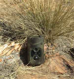 Meerkat 16 megapixel trail cam. with time lapse function