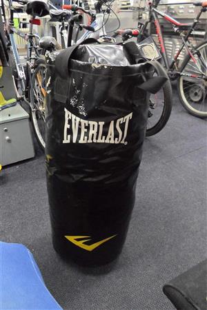 Everlast Boxing Bag - B033046061-2