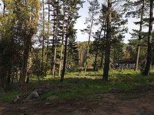 Log cabin in the woods on 1.7 hectare zoned residential